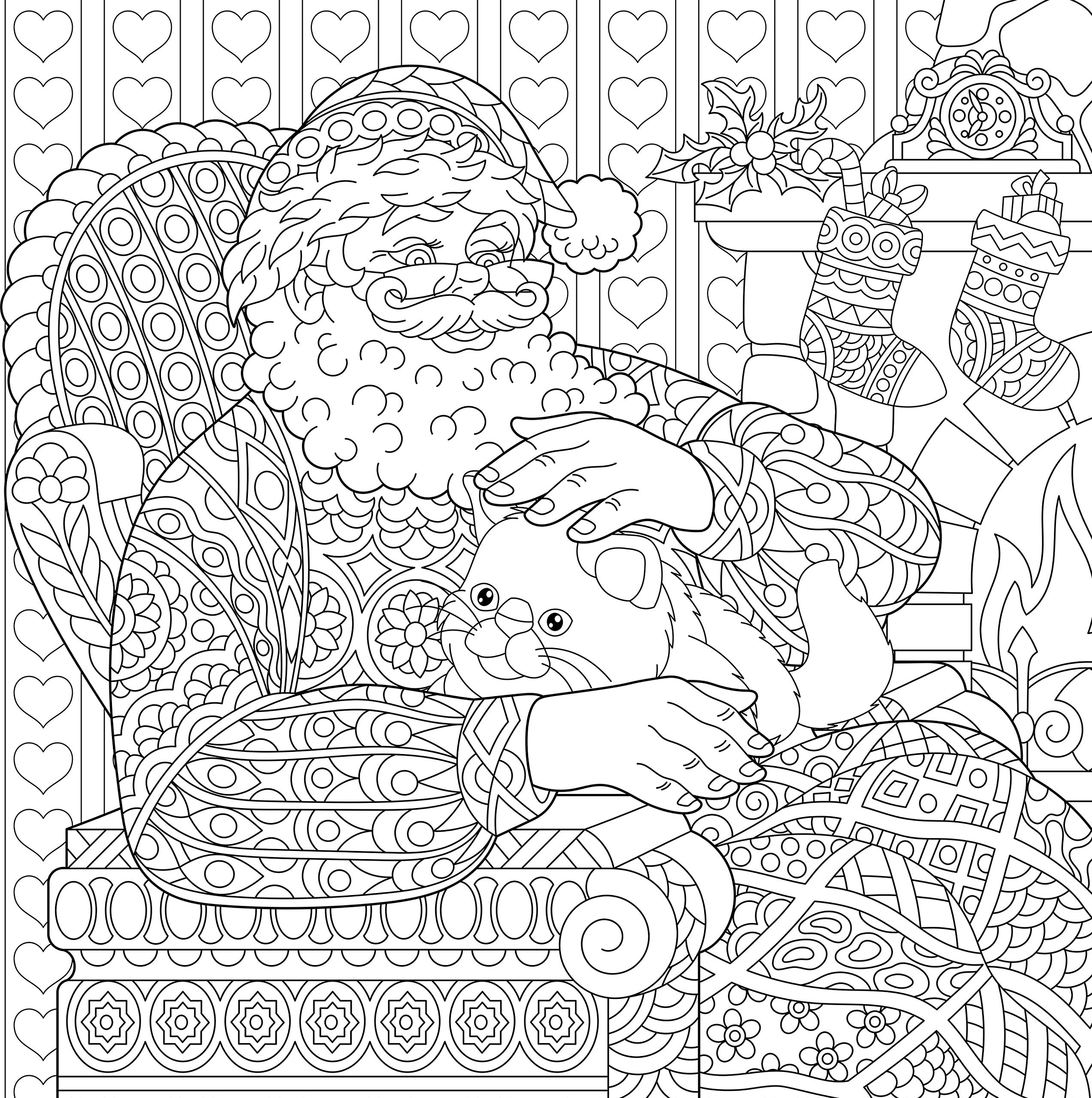 Santa Claus by the fireplace with a cat