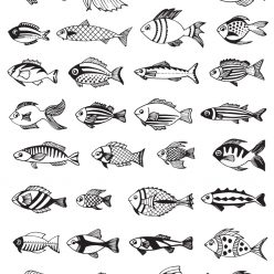 Different small fish