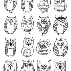 Many different sovushek
