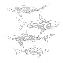 Sharks with sea ornament