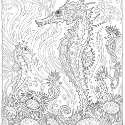 Seahorses in the depths of the ocean