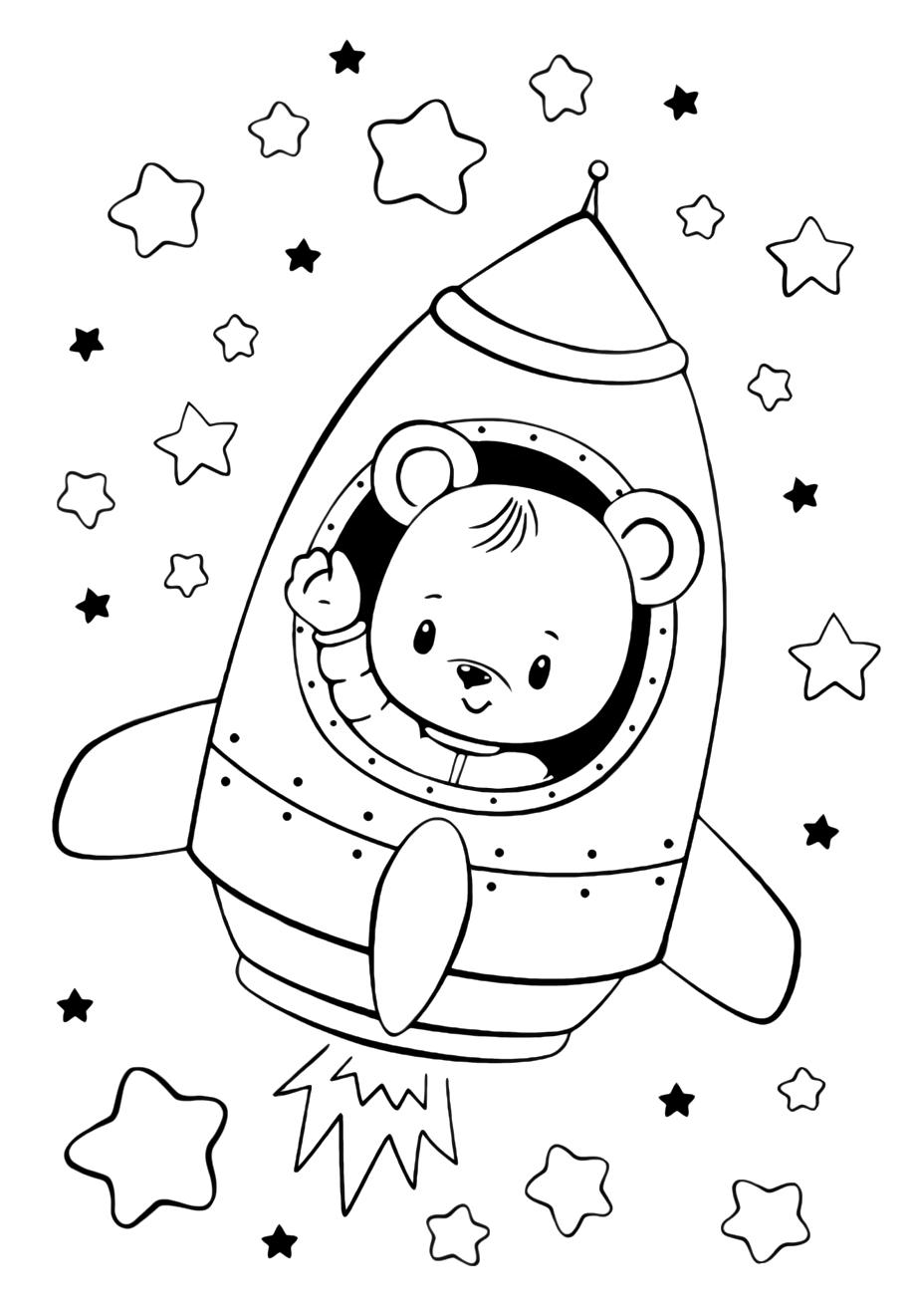 Bear in the rocket