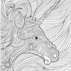 The unicorn's head