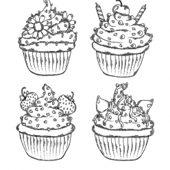 Different kinds of muffins