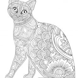 Kitty pattern