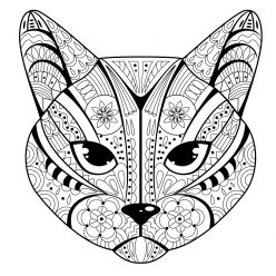 The face of a cat with tribal pattern