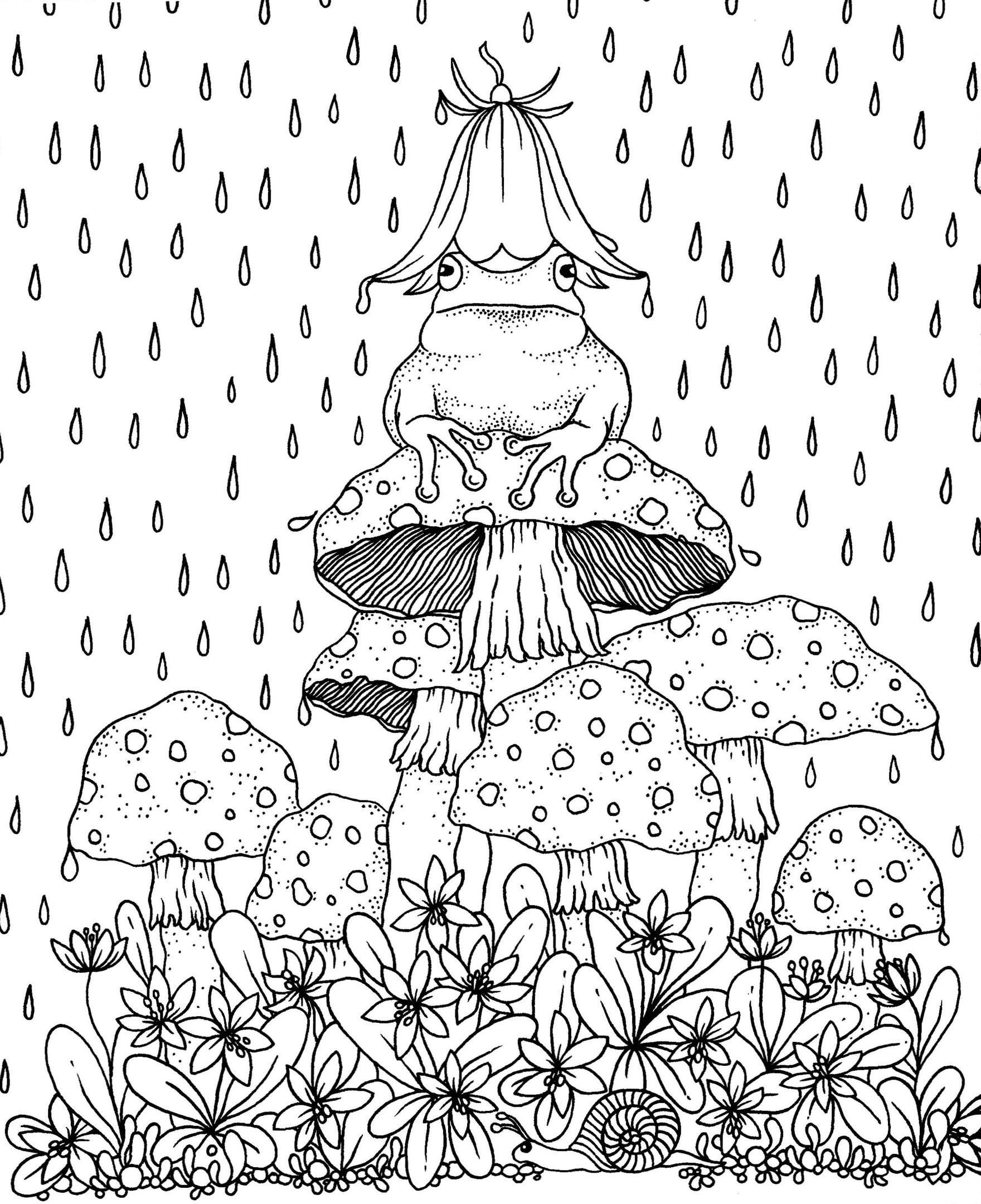 The frog on the mushroom in the rain
