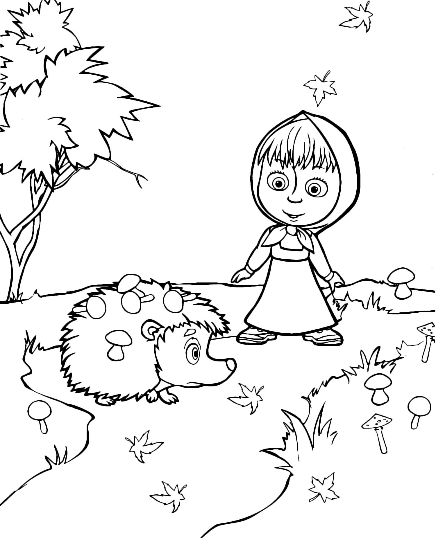 Masha hedgehog