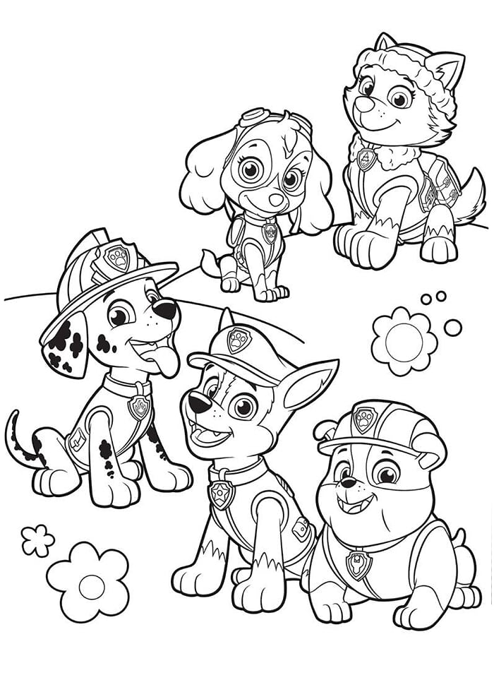 Everest and the paw patrol