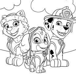 Marshal, Skye, and Everest