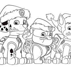 Christmas paw patrol