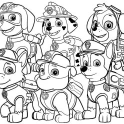 The rescue paw patrol