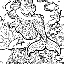 The mermaid on coral