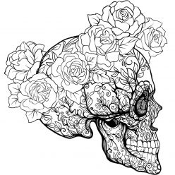 Skull profile with roses