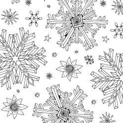 "Snowflake ""Stars"""