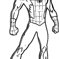 Spider man in full length