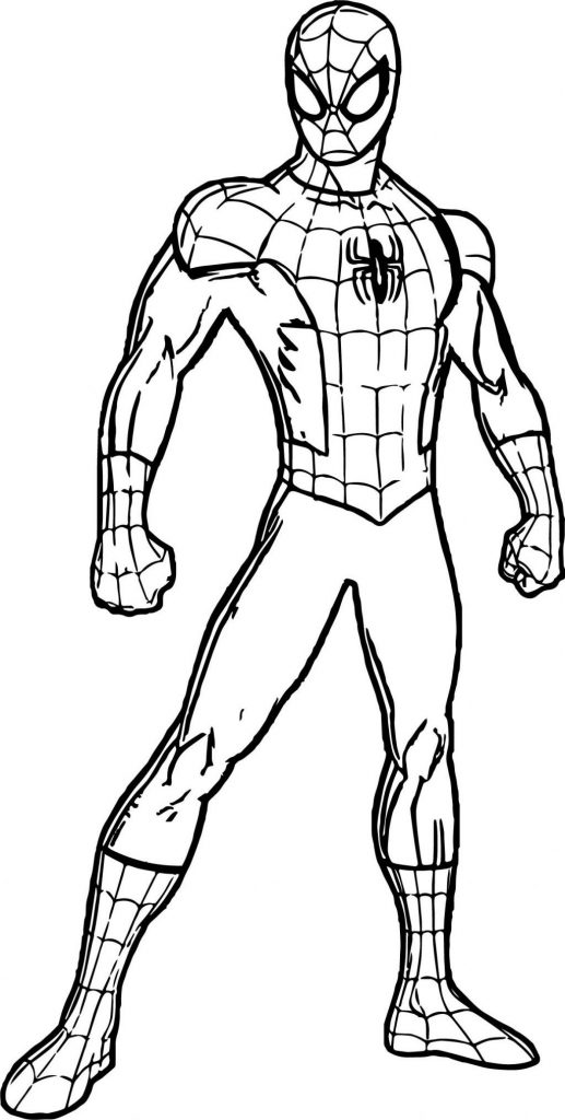 Spider man in full length - Coloring pages for you
