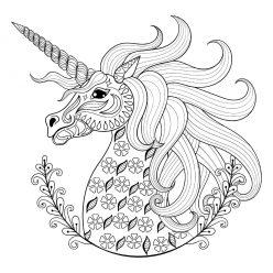 One unicorn's