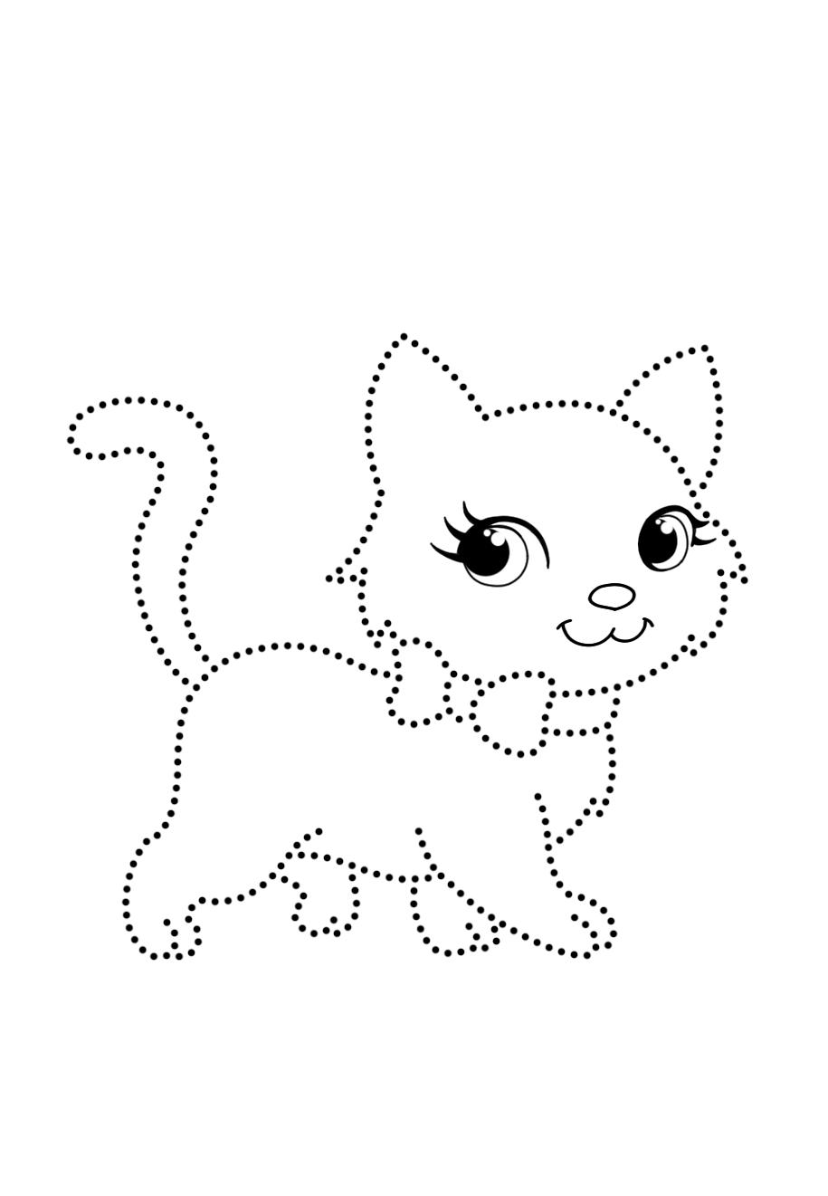 Cat points